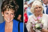 Người hâm mộ không tha thứ cho bà Camilla sau 21 năm cái chết của Diana