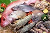 """Không chỉ bạch tuộc, cá và mực cũng được """"tái sinh"""" bằng hóa chất"""