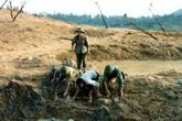 Thâm cung bí sử (145 - 7): Chiến tranh là có hy sinh