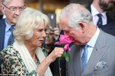 Bà Camilla: Không là hoàng hậu trong lòng công chúng nhưng là người bạn đời hoàn hảo nhất của Thái tử Charles vì đức tính tuyệt vời này