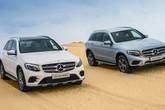 Hàng loạt xe sang của Mercedes, Audi và Ford bị triệu hồi