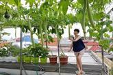"""Vườn rau chẳng khác gì """"nông trại"""" trên sân thượng của bà mẹ trẻ ở Hải Phòng"""