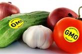 Ăn thực phẩm biến đổi gen có làm biến đổi gen của con người?