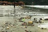 Bãi biển Quảng Ninh, Nghệ An tràn ngập rác