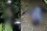 Yên Bái: Rùng mình phát hiện 2 xác chết trên đồi quế