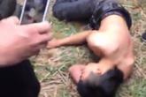 Nam thanh niên bất tỉnh vì ngã từ ngọn cây chuối xuống đất trong lễ hội xuân