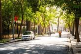 Thời tiết Hà Nội, Sài Gòn cực đẹp để đi chơi đầu năm mới