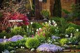 Vì tuổi thơ bất hạnh, người phụ nữ dành 20 năm để biến mơ ước tạo một khu vườn cổ tích trở thành hiện thực