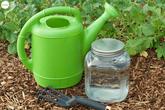 Hướng dẫn cách tự làm phân bón cho cây trồng vừa rẻ vừa an toàn cho khu vườn của bạn