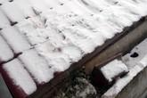 Trong tháng 1, rét đậm, rét hại sẽ mạnh đến mức nào?