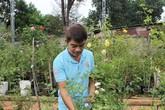 """""""Cháy điện thoại"""" dịp giáp Tết vì sở hữu khu vườn trồng 500 loài hồng ngoại đẹp mê ly"""