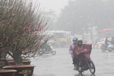 Tin mới nhất về không khí lạnh: Mưa, rét đậm tràn khắp miền Bắc