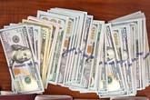 Hải Phòng: Trả lại cho du khách chiếc ba lô có 4.520 USD bị bỏ quên tại Cát Bà