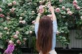 Khu vườn dịu dàng nét xuân, trăm hoa đua nở trên sân thượng 88m² của bà mẹ hai con