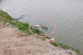 Điều tra vụ thi thể bị trói chân tay, đầu bịt túi nylon trôi trên sông