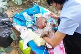 Bé sơ sinh bị bỏ rơi ở đường cao tốc