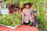 Cụ bà 50 năm sống ở nghĩa trang Sài Gòn, chứng kiến nhiều cảnh lạ