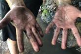 Khởi tố hình sự vụ đổ trộm dầu thải gây ô nhiễm nước sạch Sông Đà
