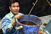 Hà Nội: Thau rửa bể nước ngầm chung cư, phát hiện nước đặc sệt, bốc mùi tựa dầu thải