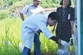 Tin mới nhất liên quan đến chất lượng nước sông Đà cung cấp cho người dân Thủ đô