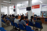 Sôi động phiên giao dịch việc làm online kết nối 8 tỉnh, thành phố