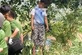 Người treo cổ tự tử ở Đắk Nông là cha của hai bé bị sát hại ở Vũng Tàu
