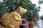 Chuột vàng cõng quất bonsai giá 5 triệu đồng hút khách chơi Tết