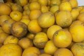 Cùng nghe người bán bưởi Diễn nhiều năm kinh nghiệm mách 6 mẹo nhỏ giúp chọn bưởi ăn Tết 10 quả thơm ngọt như 10