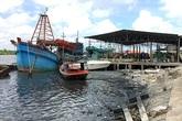 Nhiều giải pháp giảm thiểu ô nhiễm môi trường từ các khu công nghiệp ở Cà Mau