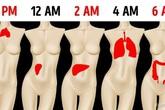 """Đêm nào cũng tỉnh giấc vào đúng """"khung giờ"""" này thì coi chừng gan, phổi, ruột của bạn đã mắc trọng bệnh, càng để lâu càng khó chữa"""