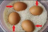 Thấy vợ đặt trứng vào trong thùng gạo cả tháng, chồng tò mò theo dõi thì nhận ra…