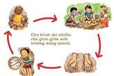 20 - 40 triệu người dân Việt nhiễm ký sinh trùng đường ruột
