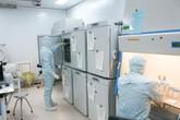 Vinmec triển khai liệu pháp miễn dịch tự thân và nhiệt trị kết hợp điều trị ung thư