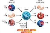 Phương pháp hỗ trợ thải độc cơ thể