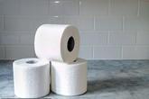 Một người phụ nữ bị phạt 400 đô vì ăn trộm đồ trong nhà vệ sinh của đồn cảnh sát