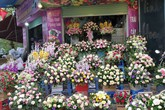 """Thị trường quà tặng 8/3: Hoa làm từ  thạch rau câu """"lên ngôi"""""""