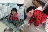 Bố nhốt con 20 tháng tuổi vào chuồng chó rồi gửi ảnh cho vợ cũ