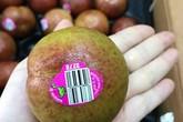 Mận 'khủng long' nhập khẩu Úc to như quả đấm, chị em tranh mua để giảm cân
