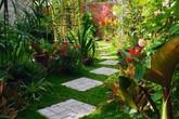 Khu vườn rộng 86m² ngập sắc hoa được mẹ đảm ở Tây Ninh cất công cải tạo từ đất trống