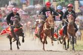 Giải đua ngựa truyền thống Bắc Hà mở rộng hứa hẹn nhiều kịch tính