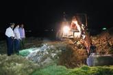 Hàng chục con lợn chết bọc trong bao tải trôi trên kênh ở Hà Tĩnh dương tính dịch tả lợn Châu Phi