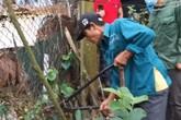 Gia Lâm - Hà Nội: Chính quyền nói gì về việc dân kêu mất tài sản sau buổi kiểm tra hiện trạng sử đụng đất?