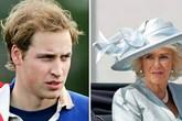 Cuộc gặp 30 phút với William khiến bà Camilla muốn uống rượu