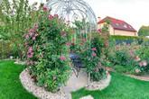 Lạc lối trong vườn hồng 400 gốc của mẹ Việt tại CH Czech