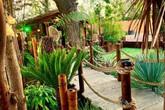 Ông chồng chi cả đống tiền để biến vườn nhà thành thiên đường nhiệt đới cho người vợ không thể đi du lịch