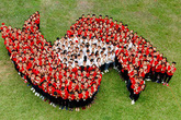 1.000 người sẽ cùng phiêu điệu Cha Cha Cha trong hội quân Hành trình Đỏ