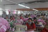 Thanh Hóa sau 10 năm thực hiện chính sách bảo hiểm thất nghiệp: 298.154 người tham gia bảo hiểm thất nghiệp
