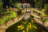 Hồ cá Koi 5 tỷ được Hoàng Mập đặt tên vô cùng đặc biệt