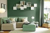 Những kiểu phòng khách xanh mướt mà người thành phố nào cũng cần
