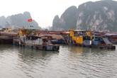 Bão số 2 cách Quảng Ninh khoảng 240 km